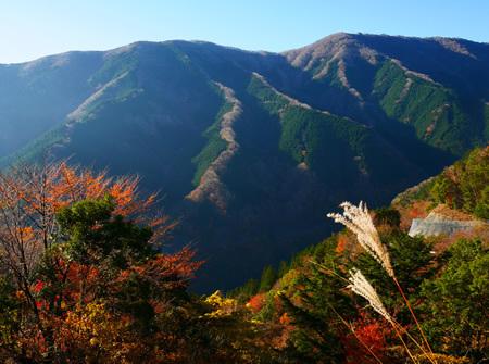 上北山村のナメゴ谷