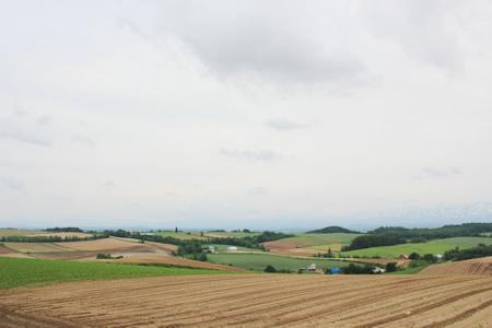 ジェットコースターの道周辺の田園風景